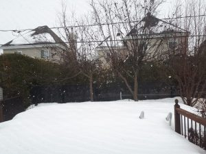 Winter 2019 Back porch